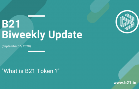 What is the B21 token?